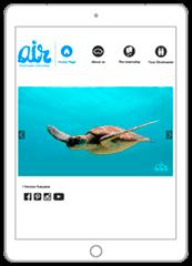 Diving Web Design Thailand - Web a Way, Creative Web Design Agency