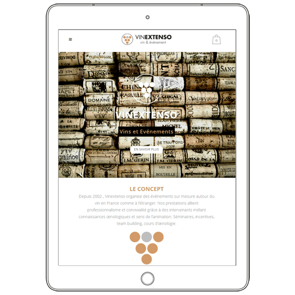 VINEXTENSO ECOMMERCE WEBSITE